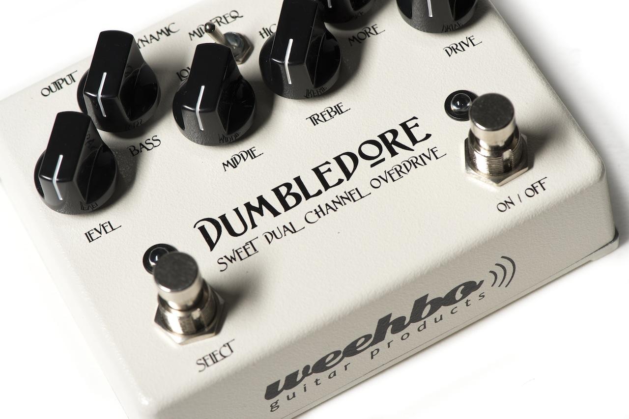dumbledore_04
